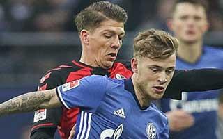 Schalke vs Freiburg