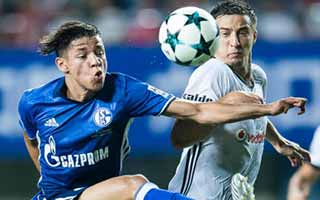 Schalke vs Besiktas