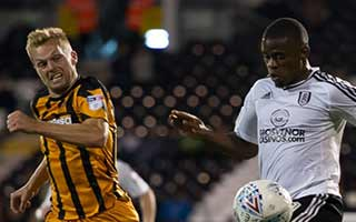 Fulham vs Hull City