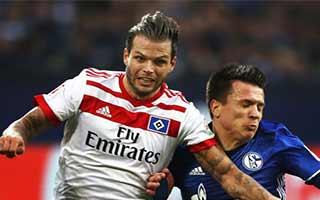 Schalke vs Hamburger SV