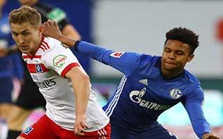 Hamburger SV vs Schalke
