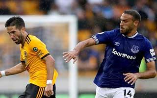Wolverhampton Wanderers vs Everton