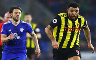 Cardiff City vs Watford