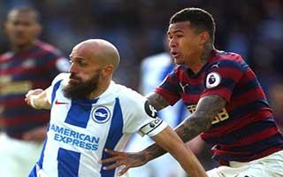 Brighton & Hove Albion vs Newcastle United