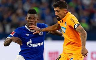 Schalke vs Hoffenheim