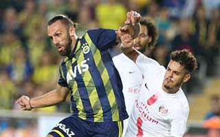 Fenerbahce vs Antalyaspor