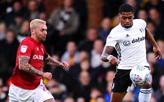 Fulham vs Bristol City