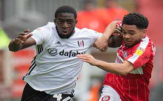 Bristol City vs Fulham